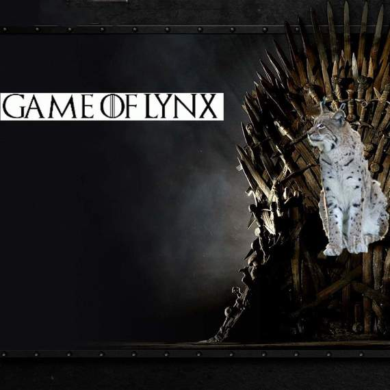 Game Of Lynx