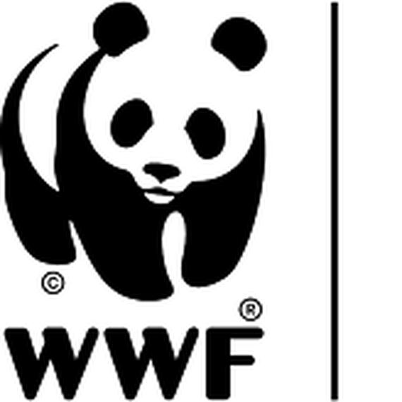 WORLD WILDLIFE FIGHT IN CAMUS