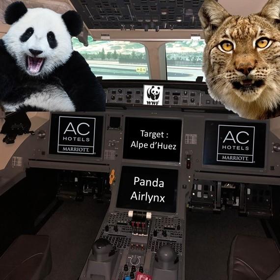Panda Airlynx