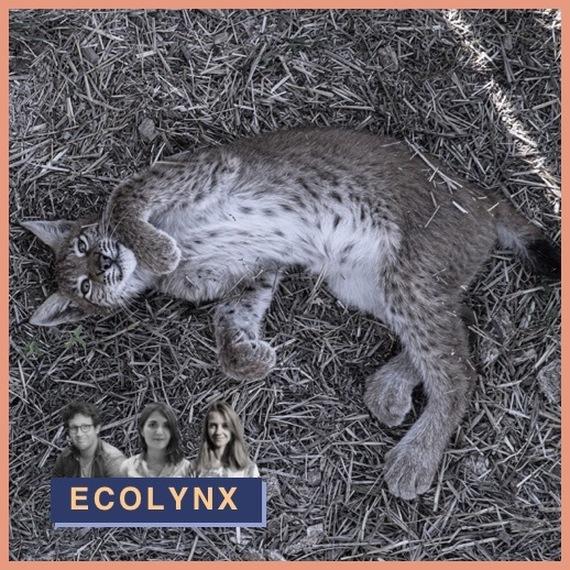 ECOLYNX