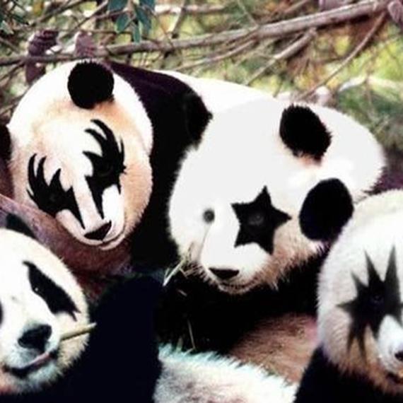 Les Pandas-Kiss