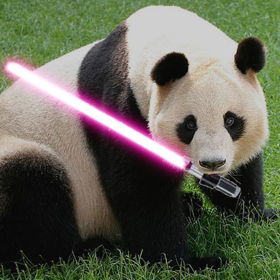 Les Pandawan - Que la force soit avec nous !