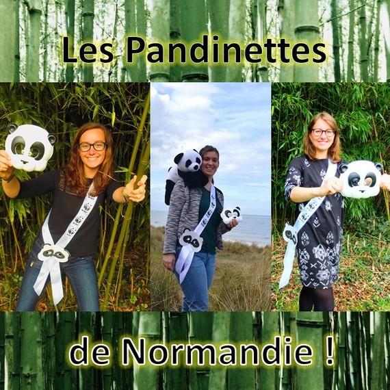Les Pandinettes de Normandie